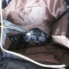 4300d1f9 Celine luggage inspirert veske svart og hvit NY! - Bloppis